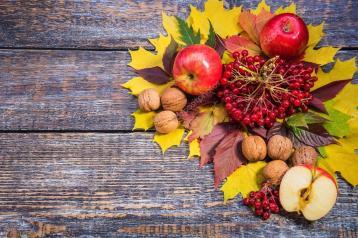 depositphotos_86955320-stock-photo-autumn-leaves-nuts-apples-viburnum