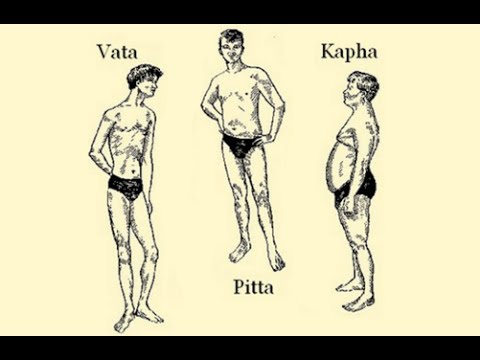 Male body types all