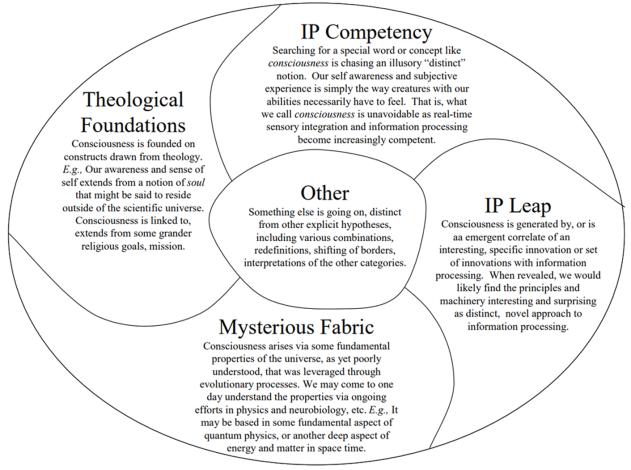 Assesing Conscious Computing